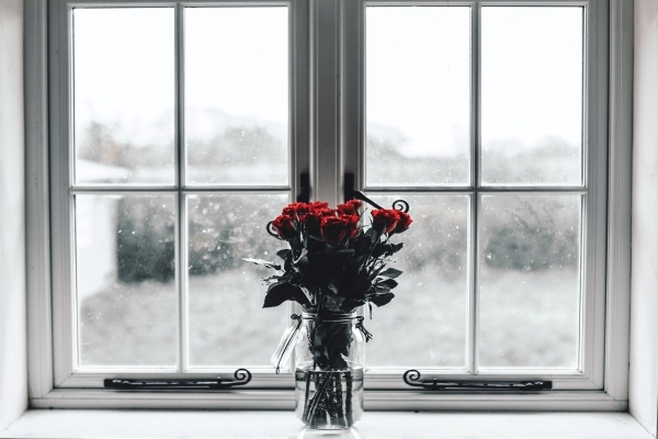 roses in vase at window